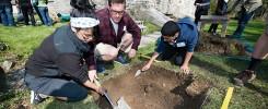 Archeological-Dig-DougLare