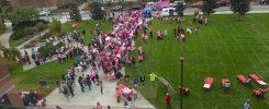 Pink light walk